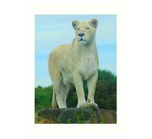 The Queen of West Midlands Safari Park Art Print