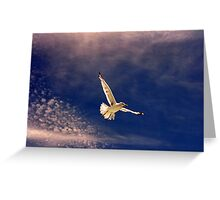 White Flight Greeting Card