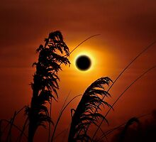 SOLAR ECLIPSE by RoseMarie747