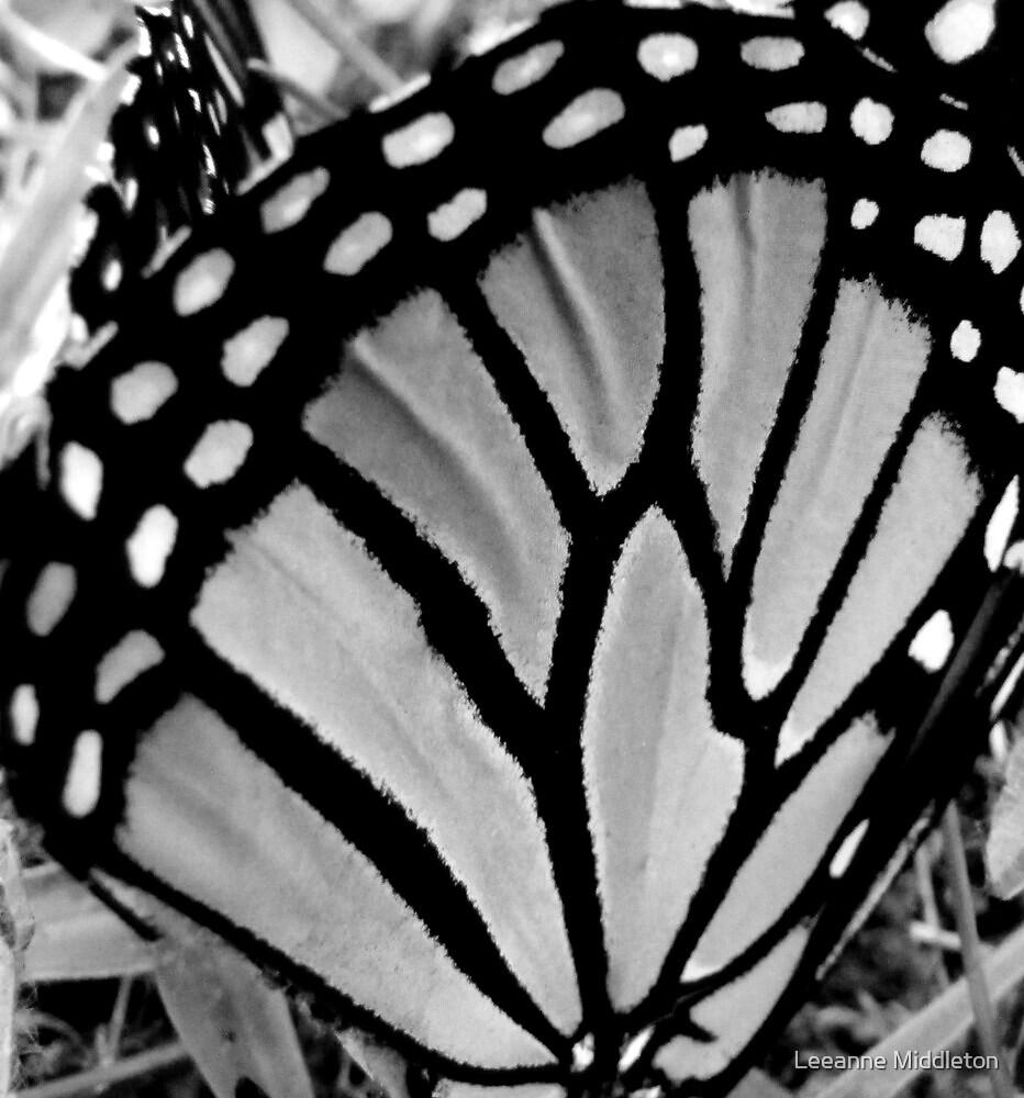 butterfly wings by Leeanne Middleton