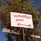 WoMaNBuLL Yard - Gibb River Road. by Lynne Haselden