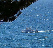 On the water, Australian sea scene by Kiriel