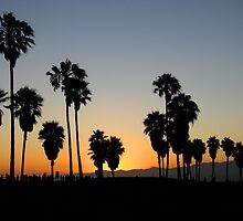 Venice Beach, CA Sunset by Barb White