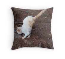 What the Heck? Throw Pillow