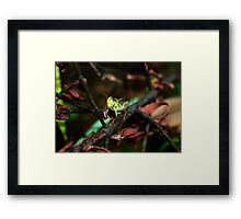 hopper Framed Print