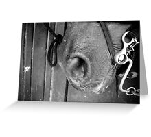 Horse Mouth Close Up Greeting Card