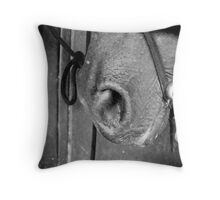 Horse Mouth Close Up Throw Pillow
