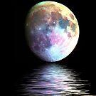 Luna by Beverly Lussier