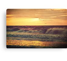 Find Light In The Beautiful Sea Canvas Print