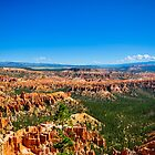 Bryce Canyon National Park by Tyler Stierhoff