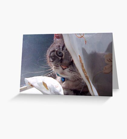 Meow if you love me. Greeting Card