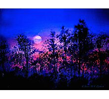 Another Blue Night Photographic Print