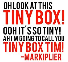 Markiplier finding tiny Tim quote Photographic Print