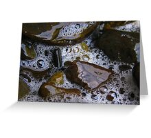 Stream Bubbles Greeting Card