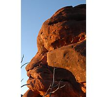 Rock sculptures...  Palm Valley Photographic Print