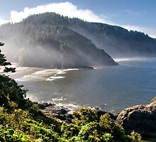 Looking Back At You ~ Oregon Coast, Pacific Ocean by TeresaB