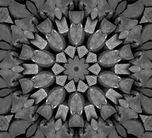 Wooden Kaleidoscope by InvictusPhotog
