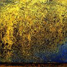 Golden Falls by Gavin Kerslake
