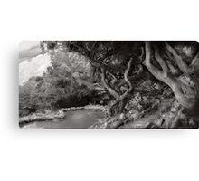 Landscape - The Forbidden Forest Canvas Print