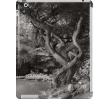 Landscape - The Forbidden Forest iPad Case/Skin