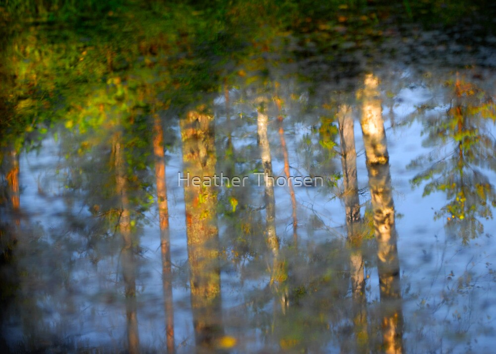 Autumn reflections in the lake by Heather Thorsen
