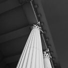 Columns In Black And White by WildestArt