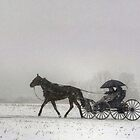 Romantic Buggy Ride In The Snow by Gene Walls