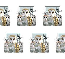 Barn Owl Pack (Pattern 1) by Adamzworld