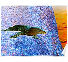 Water Dragon Surreal Poster