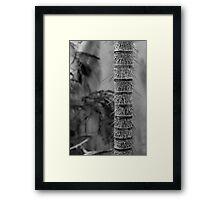 Defensive Spike Tree Framed Print