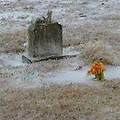 Cold Cemetery by WildestArt