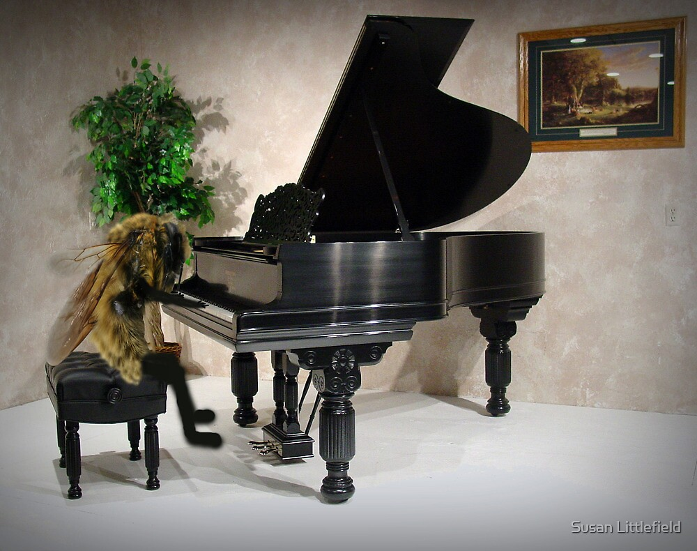 Beethoven by Susan Littlefield