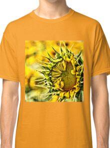 Baby Sunflower  Classic T-Shirt