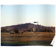 """Evening graze - Riverina Hwy outside Albury"" Poster"
