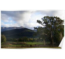 """Afternoon shadows - Riverina Hwy outside Albury"" Poster"