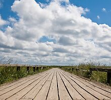 Foot Bridge - Wadden Sea by teani