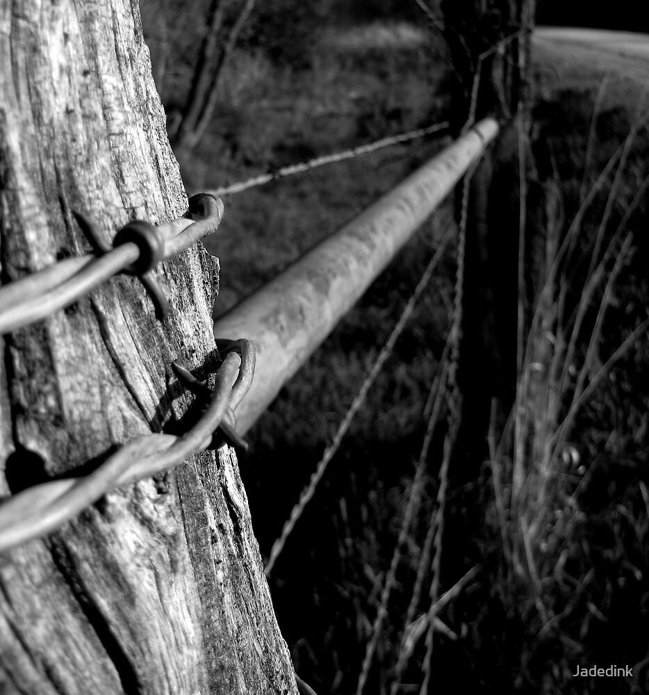 Fences Make Great Neighbors by Jadedink