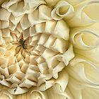 Antique Silk Dahlia by Marilyn Cornwell