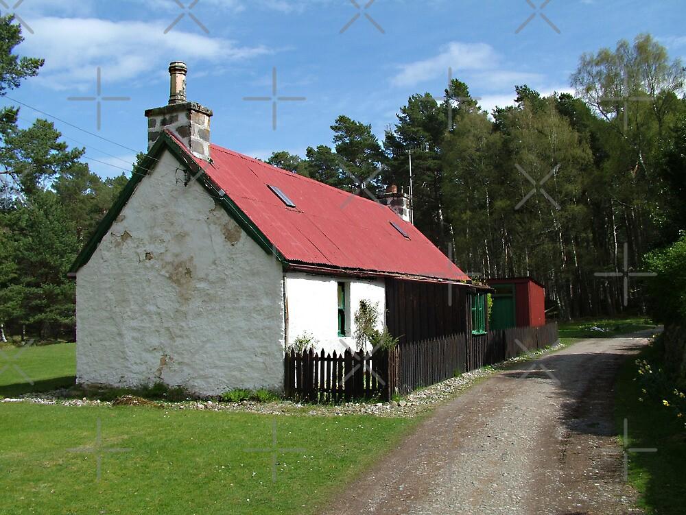 Cottage at Loch an Eilean by Tom Gomez