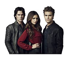The Vampire Diaries by Virginie Le Guen-Bertheaume