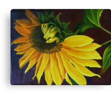 """Sunflower, Turning"" Oil on Canvas Canvas Print"