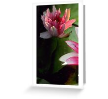 2 lily Greeting Card