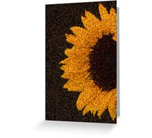 sun.flower Greeting Card