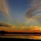 Ricefield Sunset by WildestArt
