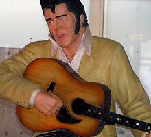 Elvis with jet lag at Heartbreak Hotel by patjila