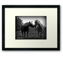 Sublime Equine Framed Print