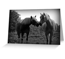 Sublime Equine Greeting Card