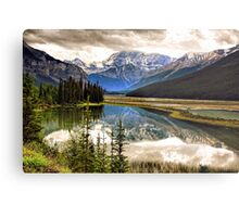 Along the Icefield Parkway, Jasper NP Metal Print