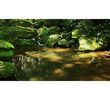 Mineral Creek Photographic Print