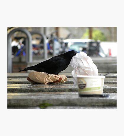 Eating Away Photographic Print